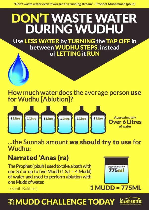 Masjid 2 - 0 Dont Waste Water During Whudu Prophetic Ablution by Islamic Posters