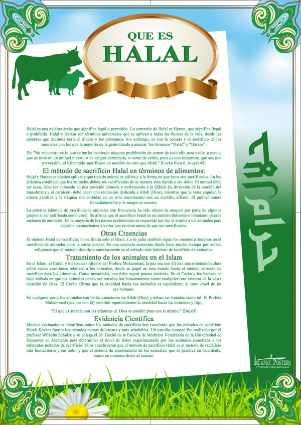 Spanish 5 - - Que es Halal By Islamic Posters